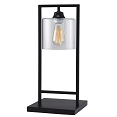 Black Painted Body WIth Clear Glass Shade