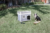 White & Grey Doggy House