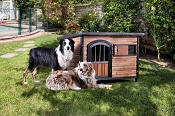 Traditional Oak with Black Finish Doggy House