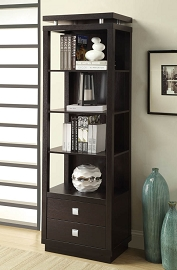 Cappuccino Finish Elegant Book Shelf