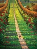 Path To Oil canvas Painting